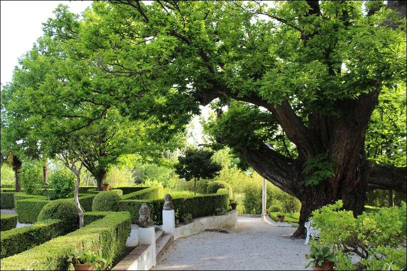 jardines-muller-niguelas003